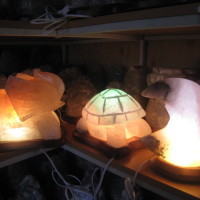 solevaya-lampa-cherepaxa-5-7-kg